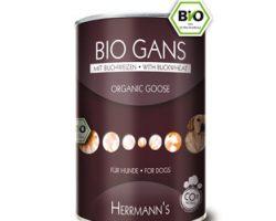 BioGansBuchweizen